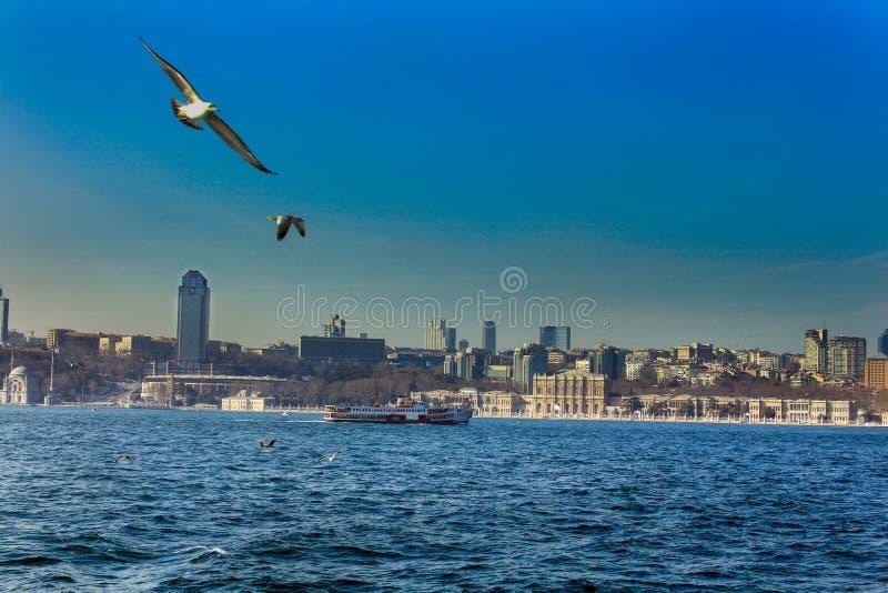 Παλάτι Ιστανμπούλ Dolmabahce Bosphorus στοκ φωτογραφία