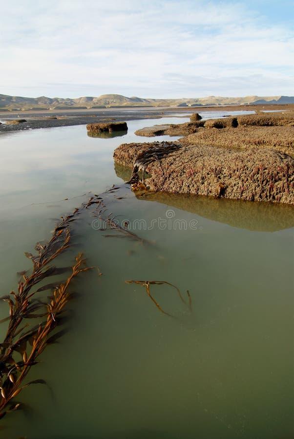 παλίρροια λιμνών της Παταγ στοκ φωτογραφία με δικαίωμα ελεύθερης χρήσης