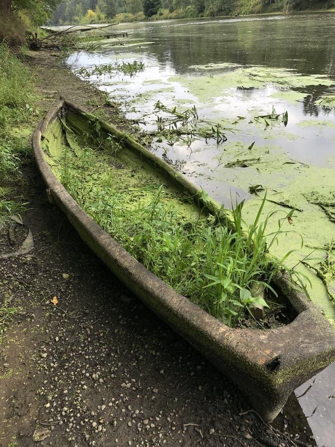 Παλαιά εγκαταλειμμένη βάρκα στην όχθη ποταμού Η άμμος κατατέθηκε μέσα στη βάρκα, το βρύο και τα φυτά αυξήθηκαν Κοντά στην επιφάνε στοκ εικόνες με δικαίωμα ελεύθερης χρήσης
