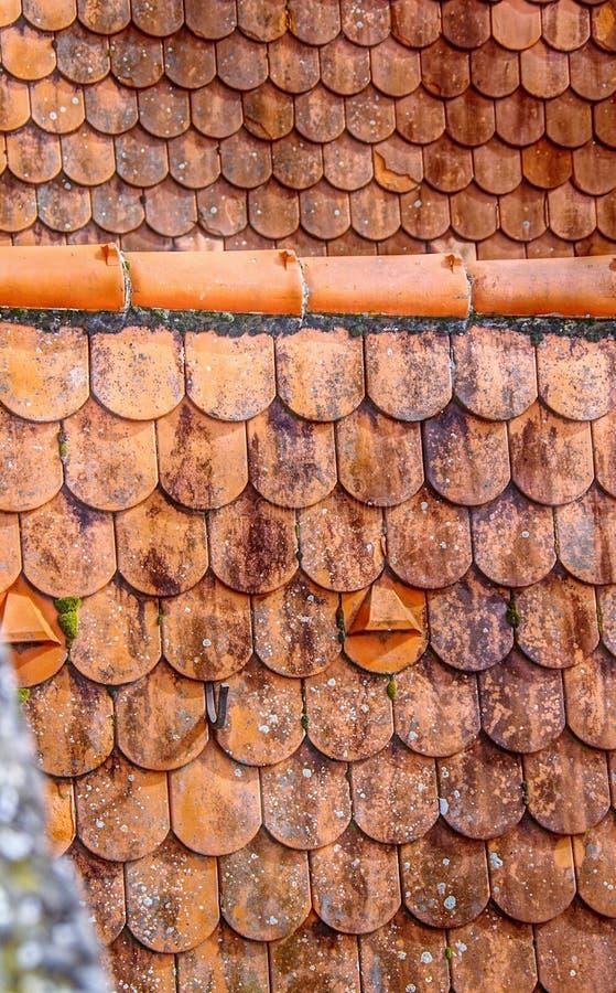 Παλαιά κεραμωμένη στέγη στη μορφή καστόρων στοκ εικόνες με δικαίωμα ελεύθερης χρήσης