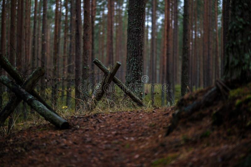 παλαιά ξύλινα trenshes στη Λετονία αναδημιουργία του πρώτου παγκόσμιου πολέμου στοκ φωτογραφία με δικαίωμα ελεύθερης χρήσης