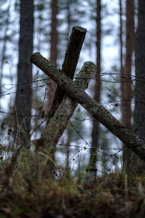 παλαιά ξύλινα trenshes στη Λετονία αναδημιουργία του πρώτου παγκόσμιου πολέμου στοκ φωτογραφίες με δικαίωμα ελεύθερης χρήσης