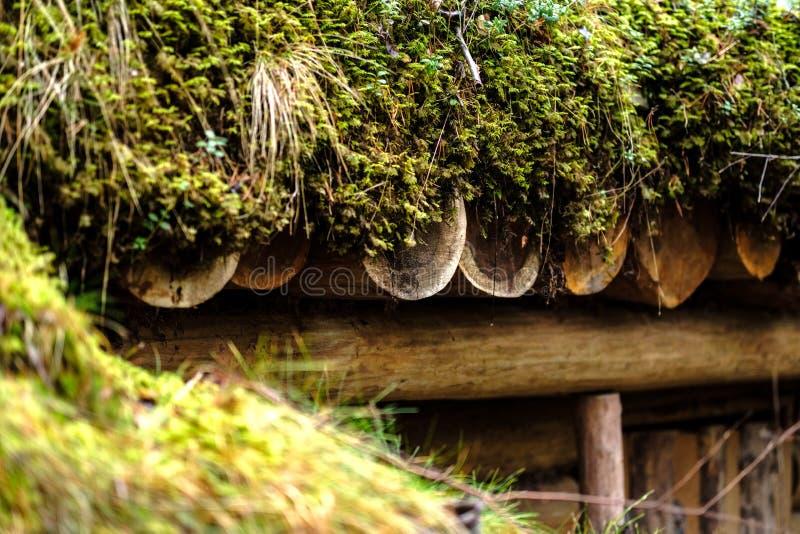 παλαιά ξύλινα trenshes στη Λετονία αναδημιουργία του πρώτου παγκόσμιου πολέμου στοκ φωτογραφίες