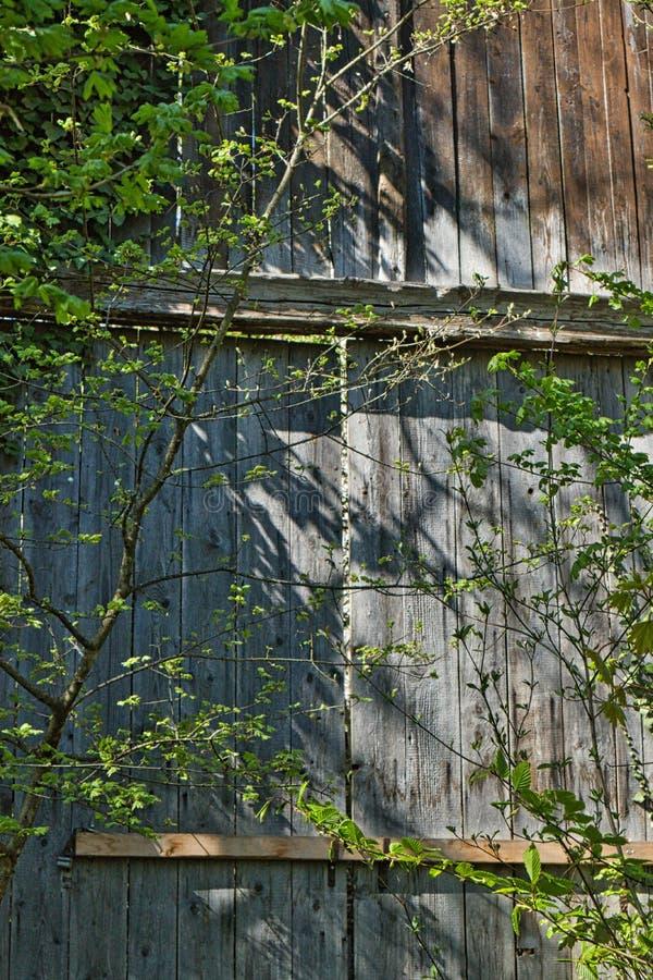 Παλαιά ξύλινη καταστροφή κάστρων πορτών στοκ εικόνα