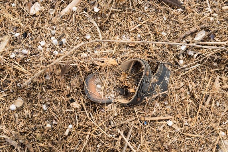 Παλαιά παπούτσια, που πλένονται στην ξηρά μετά από μια θύελλα σε έναν σωρό των απορριμάτων από την ξηρά χλόη και τα κοχύλια στοκ φωτογραφία με δικαίωμα ελεύθερης χρήσης