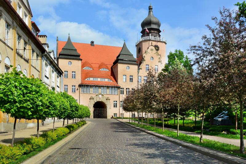 Παλαιά πόλη Elblag, Πολωνία Δημαρχείο στοκ φωτογραφίες με δικαίωμα ελεύθερης χρήσης