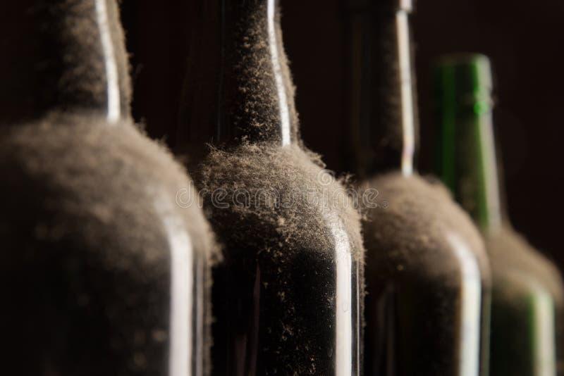 Παλαιά σκονισμένα μπουκάλια κρασιού στοκ φωτογραφία με δικαίωμα ελεύθερης χρήσης