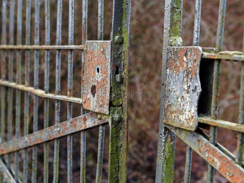 Παλαιά σκουριασμένη ανοικτή πύλη με τη σπασμένη κλειδαριά, μισάνοιχτη στοκ εικόνα