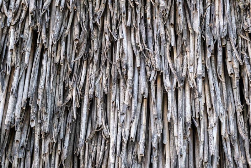 Παλαιά στέγη με το επίστρωμα καλάμων, τοπ άποψη στοκ εικόνες