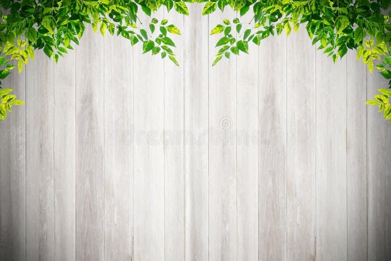 Παλαιά σύσταση και υπόβαθρο τοίχων grunge άσπρα φυσικά ξύλινα στοκ εικόνες