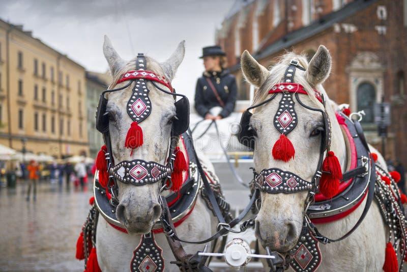 Παλαιές μεταφορές στη σύγχρονη Κρακοβία στοκ φωτογραφία με δικαίωμα ελεύθερης χρήσης