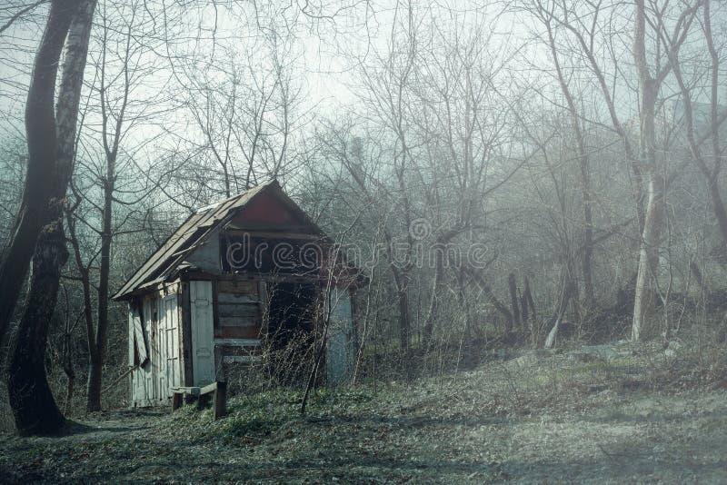Παλαιές ξύλινες καταστροφές καλυβών στο ομιχλώδες ξύλινο, απόκοσμο τοπίο στοκ εικόνα