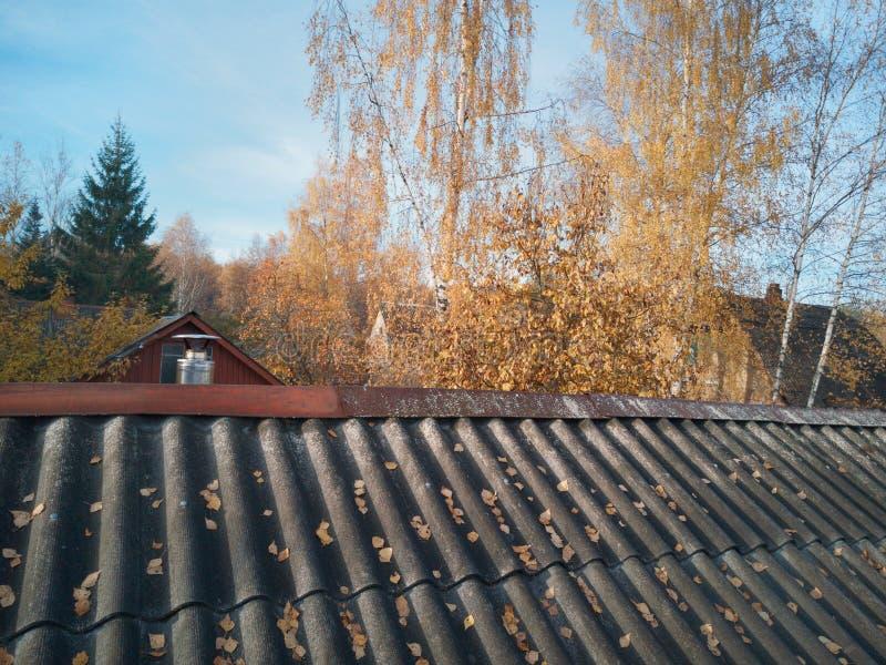 Παλαιές στέγες το φθινόπωρο στοκ εικόνες με δικαίωμα ελεύθερης χρήσης