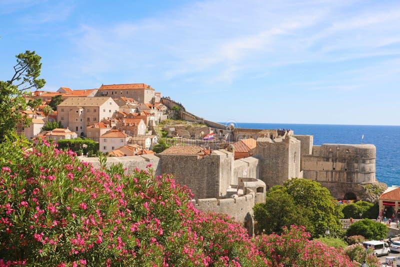 Παλαιοί πόλης τοίχοι Dubrovnik με τα λουλούδια, Κροατία, Ευρώπη στοκ εικόνες