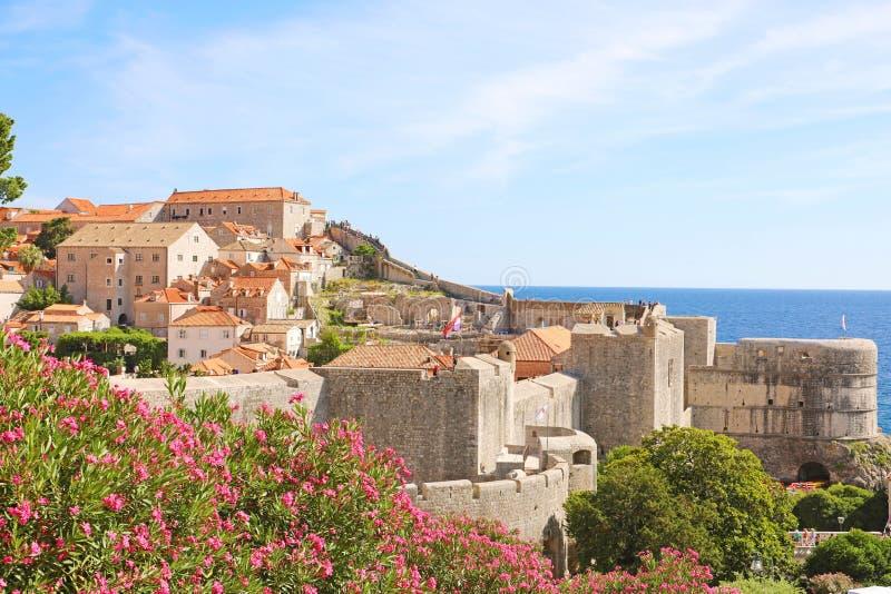 Παλαιοί πόλης τοίχοι Dubrovnik με τα λουλούδια, Κροατία, Ευρώπη στοκ φωτογραφία με δικαίωμα ελεύθερης χρήσης