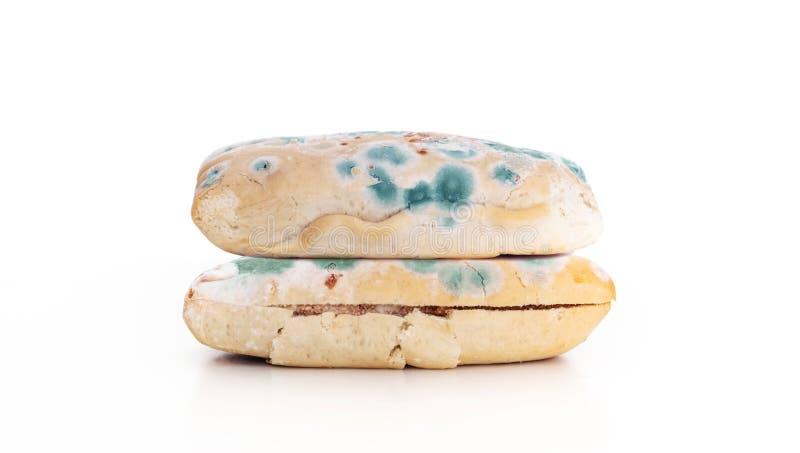 Παλαιός έληξε σάντουιτς ψωμιού με το μύκητα, που απομονώθηκε στο άσπρο υπόβαθρο στοκ εικόνα με δικαίωμα ελεύθερης χρήσης