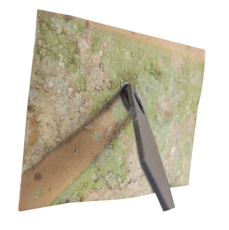 Παλαιός βρώμικος μύκητας στο πίσω μέρος του πλαισίου φωτογραφιών με τη στάση στοκ φωτογραφία με δικαίωμα ελεύθερης χρήσης