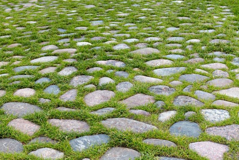 Παλαιός δρόμος κυβόλινθων με τη χλόη μεταξύ των πετρών στοκ εικόνες