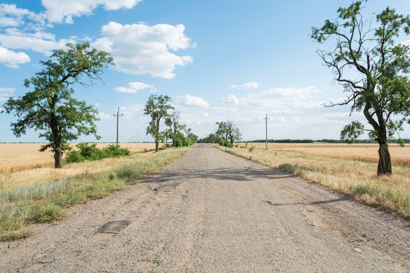 Παλαιός δρόμος πίσσας ασφάλτου με το μπλε ουρανό δέντρων και σύννεφων τοπίων τομέων σίτου στοκ φωτογραφία με δικαίωμα ελεύθερης χρήσης