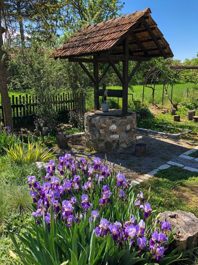 Παλαιός καλά με τα πορφυρά λουλούδια στοκ φωτογραφίες