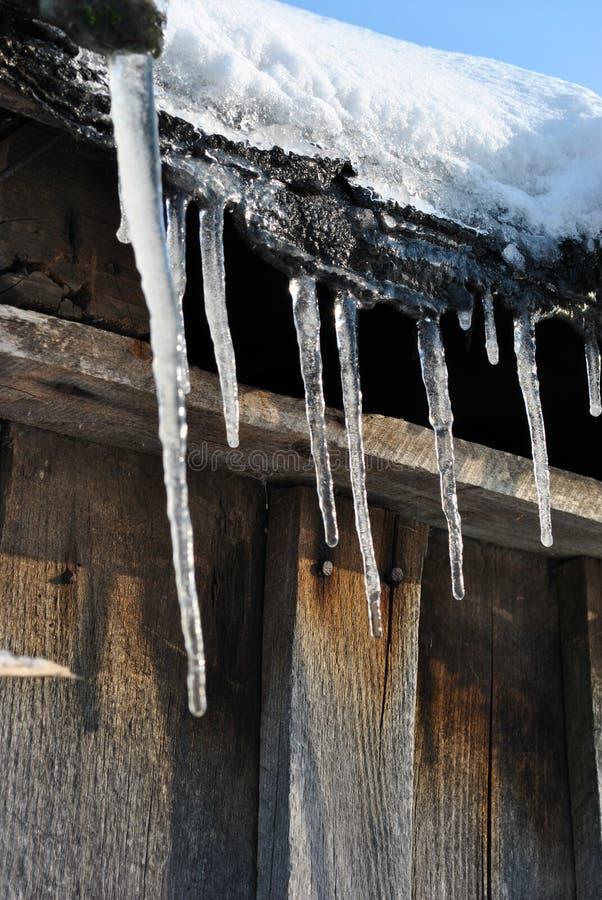 Παλαιός ξύλινος τοίχος σανίδων του κοτετσιού με τα σκουριασμένα καρφιά που καλύπτονται με το άσπρο χιόνι στη στέγη και το παγάκι, στοκ εικόνες