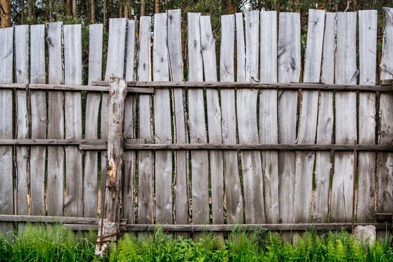 Παλαιός ξύλινος φράκτης σε ένα δάσος πεύκων στοκ εικόνες