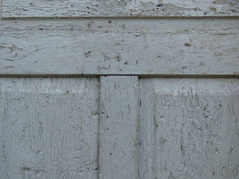 Παλαιός ο γκρίζος ξύλινος πίνακας πορτών πουφαγώθηκε από τα σκουλήκια και τους κανθάρους Ξεφλουδισμένο γκρίζο χρώμα στοκ εικόνα με δικαίωμα ελεύθερης χρήσης