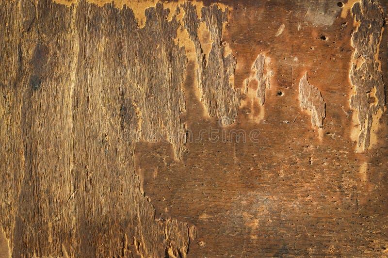 Download παλαιός ράβοντας καπλαμά&sig Απεικόνιση αποθεμάτων - εικονογραφία από παλαιός, οριζόντιος: 22782918