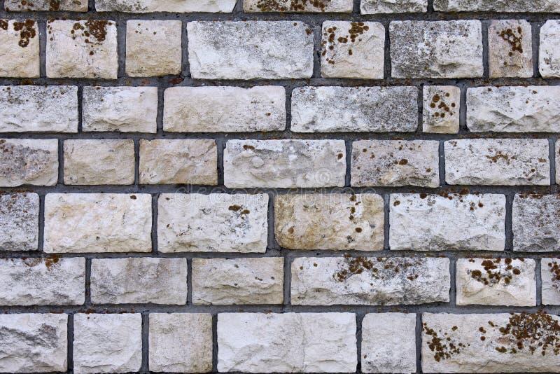 παλαιός τοίχος πετρών στοκ εικόνα με δικαίωμα ελεύθερης χρήσης