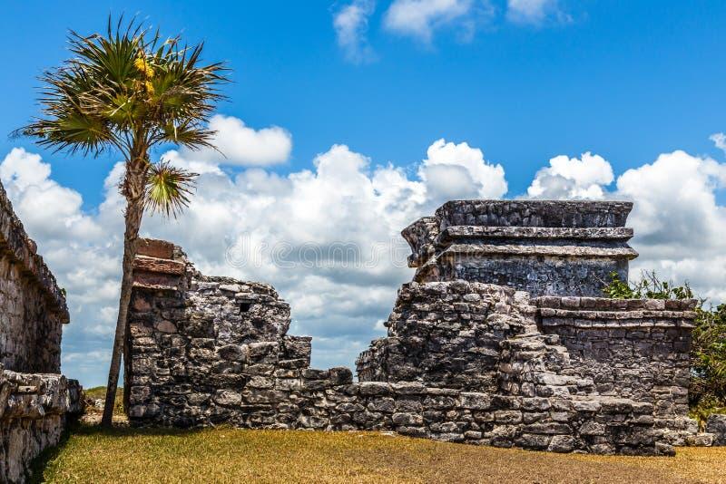 Παλαιό αρχαίο των Μάγια σπίτι με το φοίνικα και το μπλε ουρανό, Tulu στοκ φωτογραφία με δικαίωμα ελεύθερης χρήσης