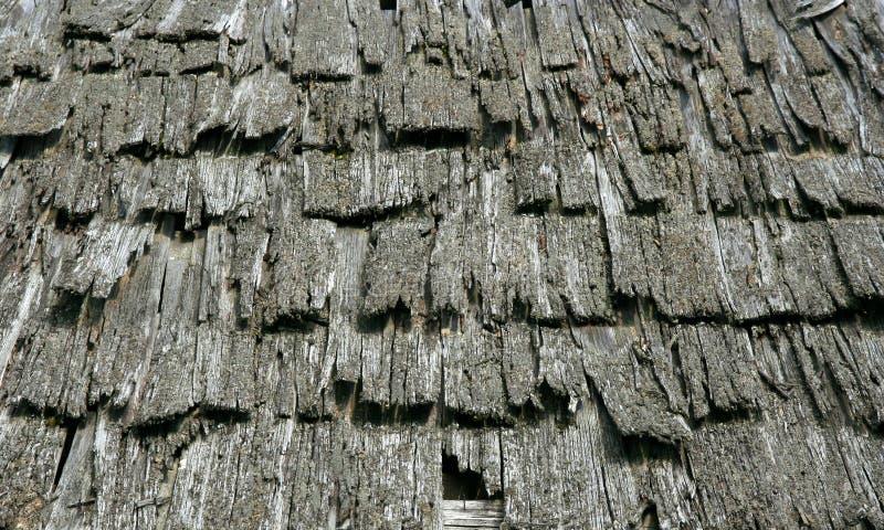 παλαιό δάσος στεγών στοκ εικόνες