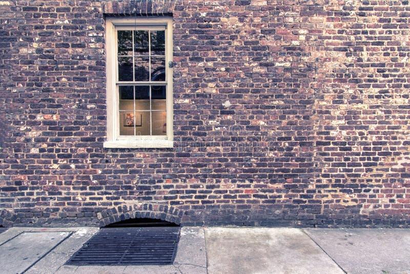 Παλαιό καλλιτεχνικό παράθυρο στις οδούς της ιστορικής περιοχής Τσάρλεστον στοκ φωτογραφία
