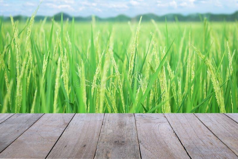 Παλαιό ξύλινο επιτραπέζιο πρώτο πλάνο με το αυτί του ορυζώνα, χρυσός τομέας ρυζιού, με τον ουρανό και το υπόβαθρο σύννεφων στοκ εικόνα
