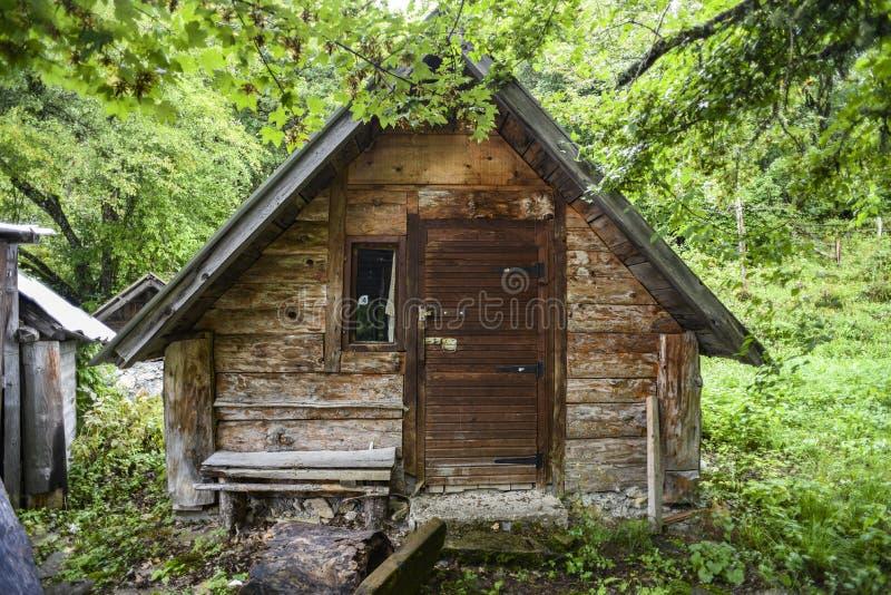 Παλαιό ξύλινο μικρό εγκαταλειμμένο σπίτι στα ξύλα στοκ εικόνες με δικαίωμα ελεύθερης χρήσης