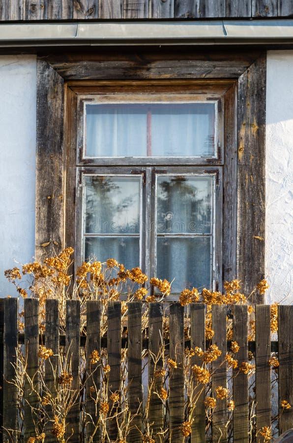Παλαιό ξύλινο πλαίσιο παραθύρων, ξύλινα ξηρά λουλούδια φρακτών, τρύγος παλαιό στοκ εικόνα με δικαίωμα ελεύθερης χρήσης