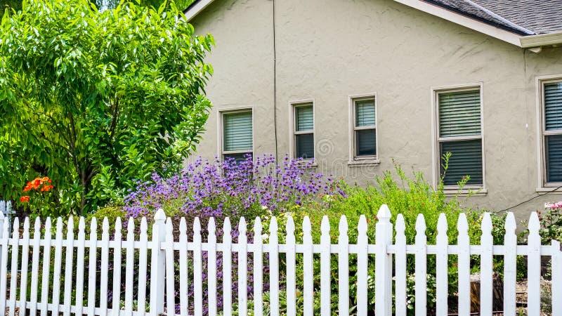 Παλαιό σπίτι με τον ανθίζοντας φράκτη κήπων και στύλων στη θέα βουνού, περιοχή κόλπων του Σαν Φρανσίσκο, Καλιφόρνια στοκ εικόνες με δικαίωμα ελεύθερης χρήσης