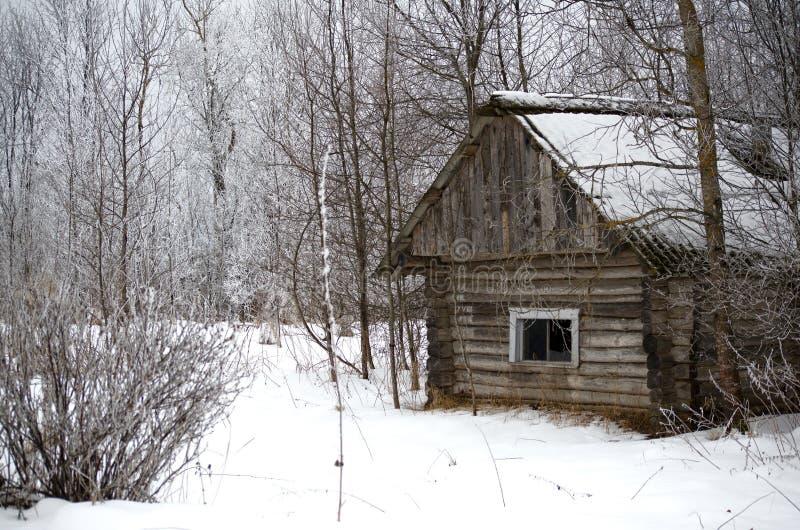 Παλαιό σπίτι στο χιονισμένο χειμερινό δάσος στοκ εικόνα με δικαίωμα ελεύθερης χρήσης