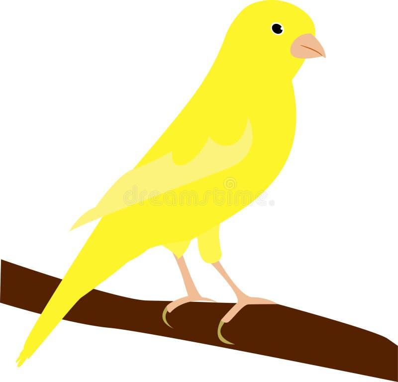 Παλαιό χρονικό δημοφιλές πουλί: το κίτρινο καναρίνι απεικόνιση αποθεμάτων