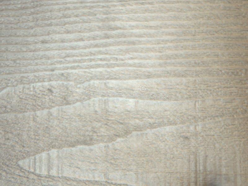 Παλιά σκουρόχρωμη βελανιδιά, ξύλινη υφή σε ένα πριόνι στοκ φωτογραφίες