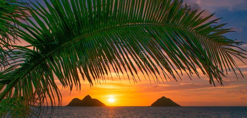 Πανέμορφη ανατολή παραλιών Lanikai στοκ φωτογραφία με δικαίωμα ελεύθερης χρήσης