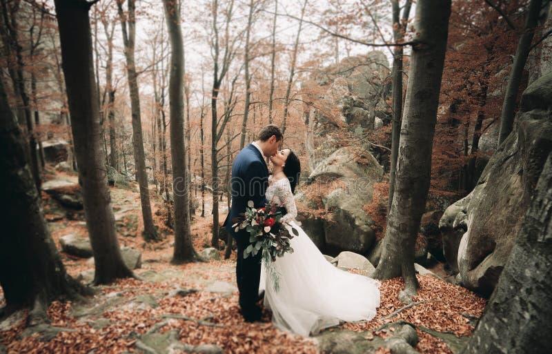 Πανέμορφη νύφη, νεόνυμφος που φιλά και που αγκαλιάζει κοντά στους απότομους βράχους με τις ζαλίζοντας απόψεις στοκ εικόνες με δικαίωμα ελεύθερης χρήσης