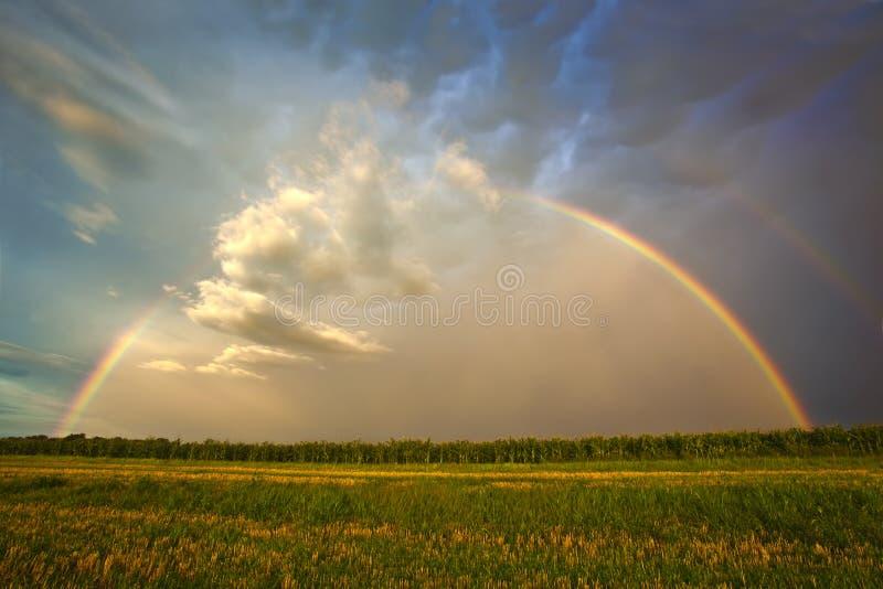 πανέμορφο ουράνιο τόξο θυ& στοκ εικόνες