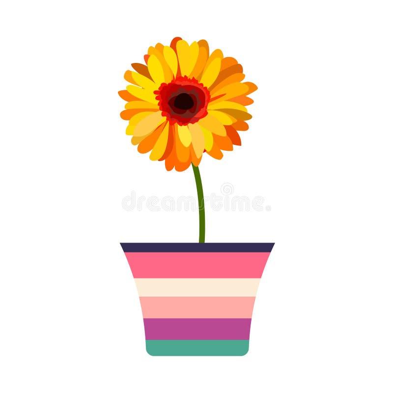 Πανέμορφο πορτοκαλί λουλούδι με έναν πράσινο μίσχο που χρωματίζεται flowerpot Απεικόνιση που απομονώνεται διανυσματική στο λευκό ελεύθερη απεικόνιση δικαιώματος