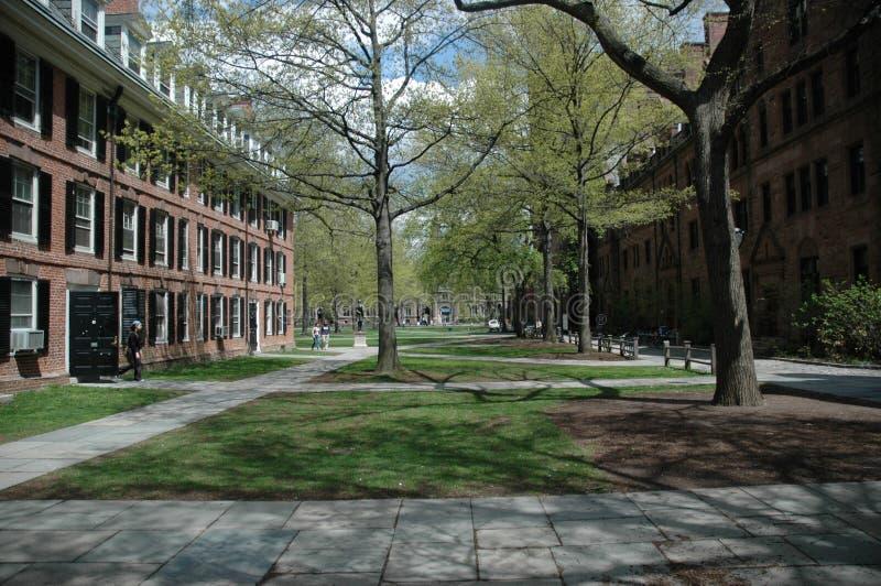 πανεπιστήμιο yale στοκ εικόνα με δικαίωμα ελεύθερης χρήσης
