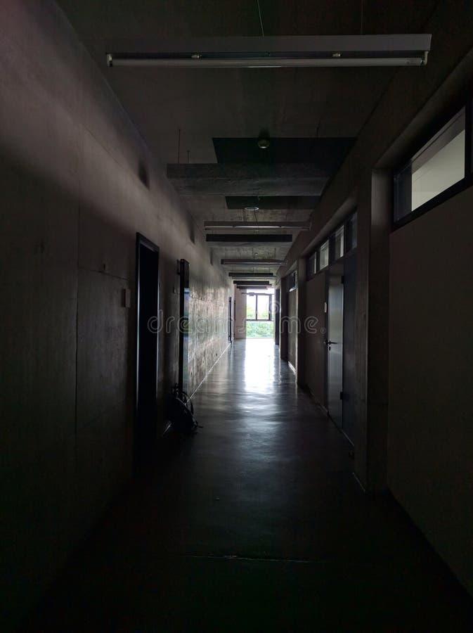 Πανεπιστημιακός διάδρομος στοκ εικόνες