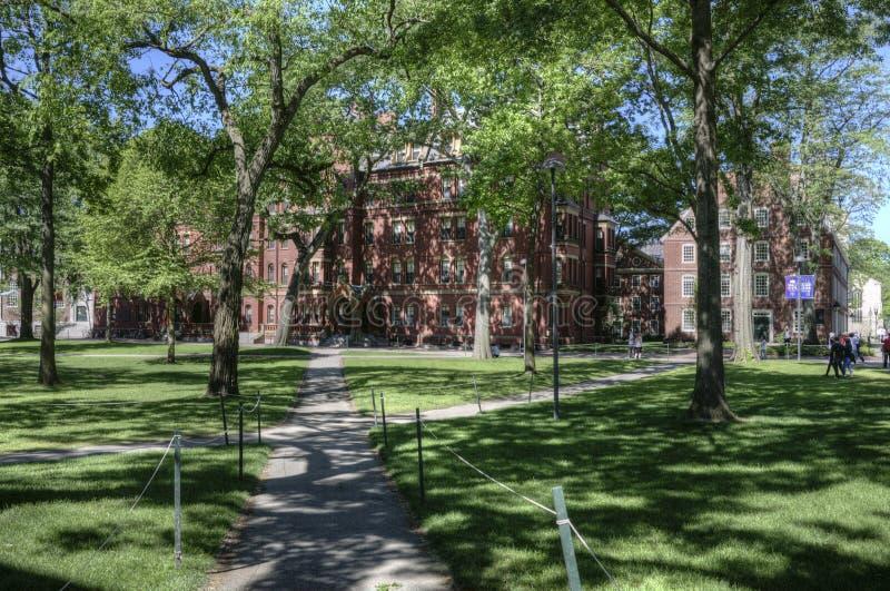 Πανεπιστημιούπολη Πανεπιστημίου του Χάρβαρντ, Καίμπριτζ, ΗΠΑ στοκ εικόνες