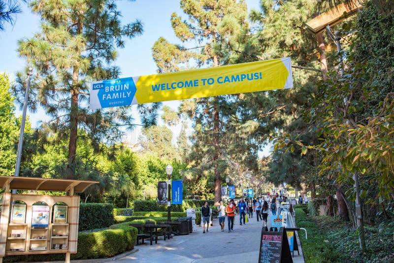 Πανεπιστημιούπολη UCLA στοκ εικόνα
