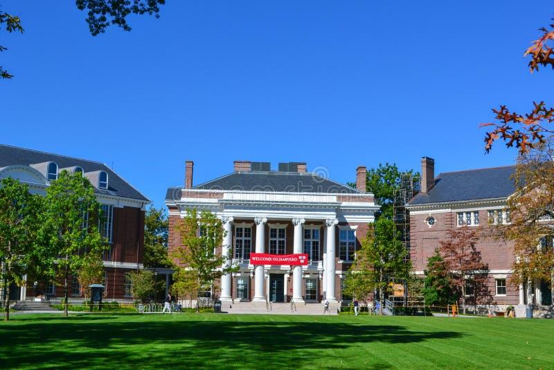 Πανεπιστημιούπολη του Χάρβαρντ στοκ εικόνες