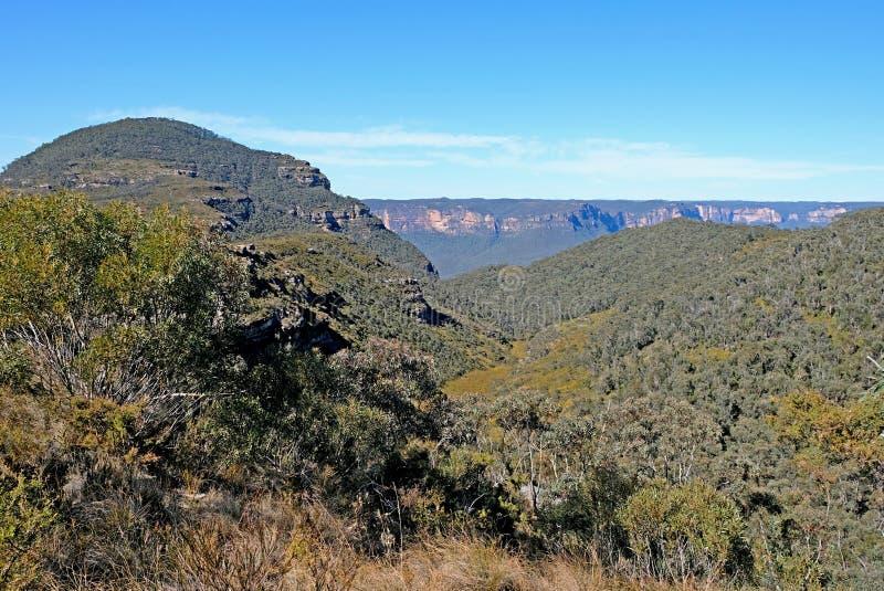 Πανοραμική άποψη για το Εθνικό Πάρκο των Γαλάζιων Βουνών, Katoomba, Νέα Νότια Ουαλία, Αυστραλία στοκ φωτογραφίες με δικαίωμα ελεύθερης χρήσης