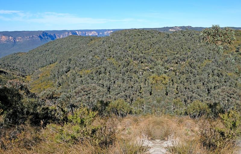 Πανοραμική άποψη για το Εθνικό Πάρκο των Γαλάζιων Βουνών, Katoomba, Νέα Νότια Ουαλία, Αυστραλία στοκ εικόνα